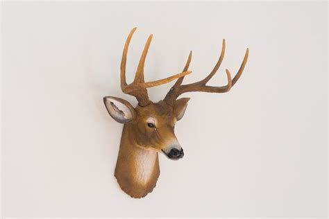 fake deer faux taxidermy deer head homestead seattle