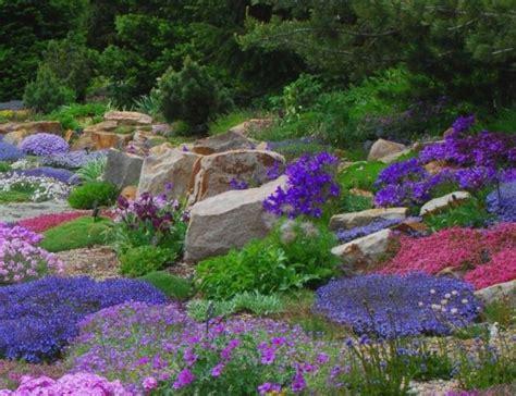 piante giardino roccioso giardino roccioso ideare casa