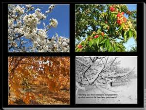 The Four Seasons Galliawatch Four Seasons Of Health And Happiness To All