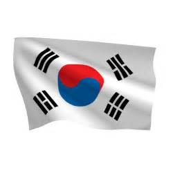 Indoor Wall Garden - south korea flag heavy duty nylon flag flags international