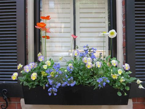 window box flower designs 20 wonderfull window and balcony flower box ideas that you
