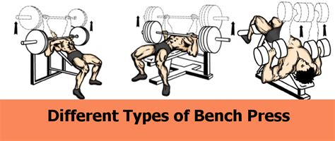 different types of bench press bars can push ups replace the bench press for building a