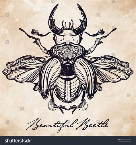 antique tattoos beautiful antique stag beetlethe stock vector