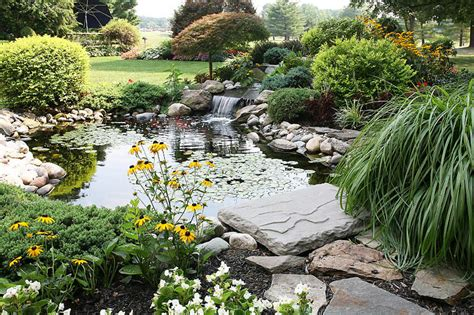 Backyard Ponds Ideas by Inspiring Backyard Pond Ideas Corner