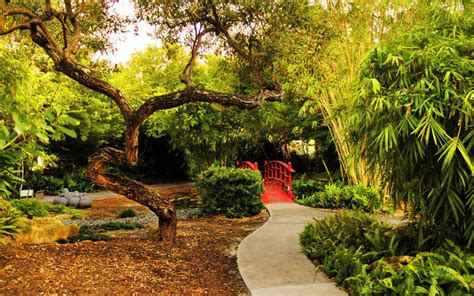 Attractive Fairchild Tropical Botanic Garden Wedding #8: MIAMI1015-miami-beach-botanical-garden.jpg?itok=v1QNMLyC