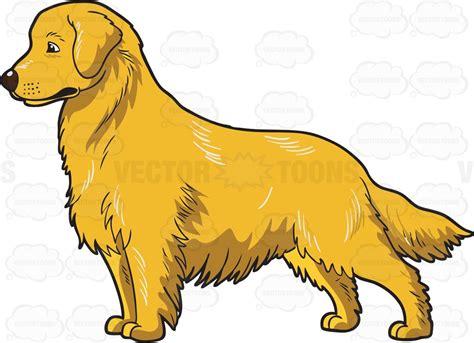 golden retriever clipart an adorable golden retriever clipart vector