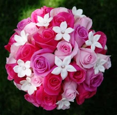 Flowers 101 Stephanotis by Wedding Themes