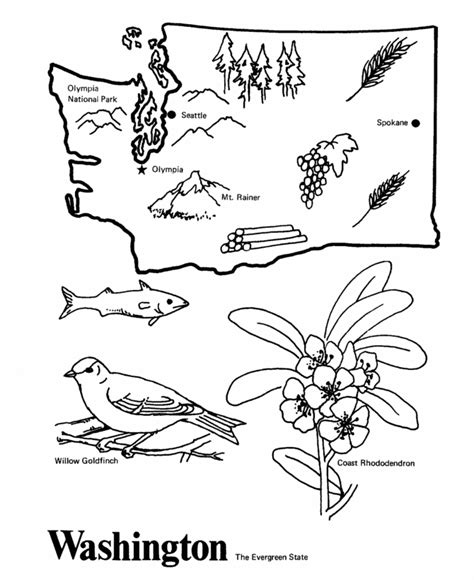 free coloring pages of washington state tree