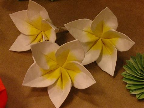 How To Make Paper Hawaiian Flowers - plumeria by aldo marcell origami photos