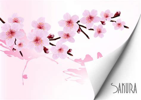 latar belakang indah bunga sakura vector latar belakang