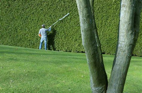 manutenzione giardino condominiale manutenzione ordinaria giardino condominiale condominios 236