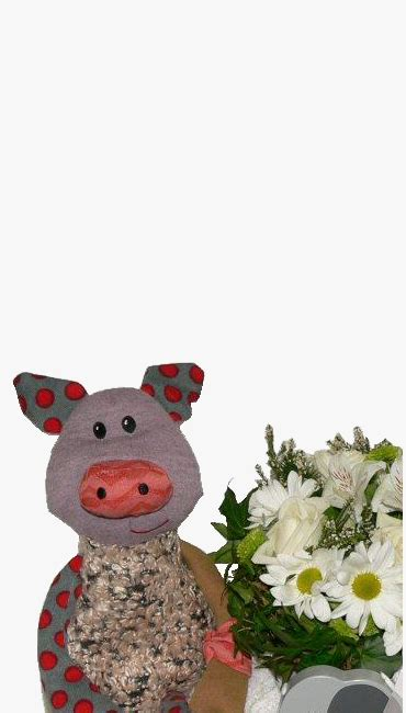 new baby flowers and gifts dream world florist decor putts green florist kerikeri its about the flowers