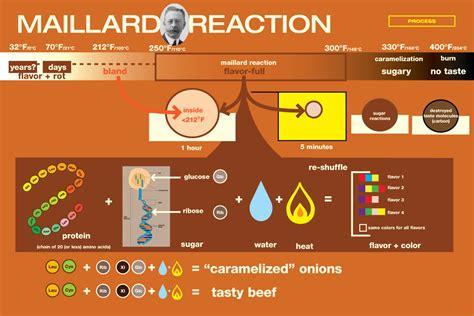 Maillard Reaction Explained   LC Maillard