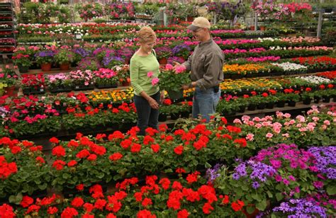 merrifield garden center gainesville