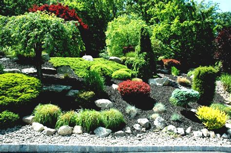 Ideas Front Yard Small Garden Designs Landscape Full Sun