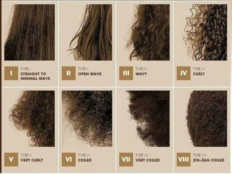 Types Of Hair Textures For Black Hair by Best 25 Hair Texture Chart Ideas On Afro