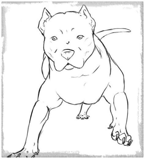 Imagenes Para Dibujar De Perros Pitbull | imagenes para colorear de perros pitbull archivos