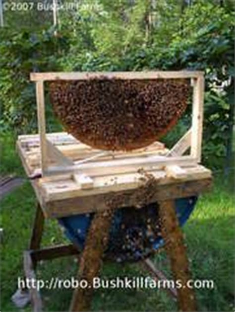 How To Extract Honey From A Top Bar Hive by Make Your Own Honey Cow Top Bar Bee Hive Beehive Bee