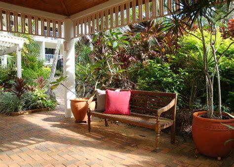 imagenes de jardines segun el feng shui feng shui plantas consejos para crear buena energ 237 a