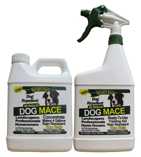 Pengusir Kucing Cat Repellent Spray Ready Stock mace 32oz ready to use spray plus 32oz concentrate nature s mace