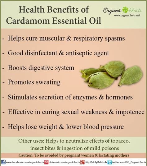 Cardamom Based Home Remedies by 8 Best Images About Living On Sinus