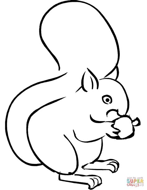 Printable Coloring Pages Of Squirrels