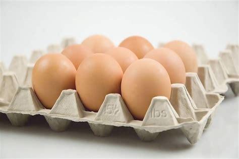 alimenti non contengono iodio lo iodio non sta nel sale gli alimenti lo contengono