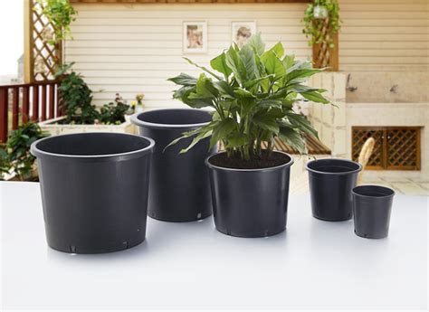 big planter pots which plant pots to use t5 grow light fixtures