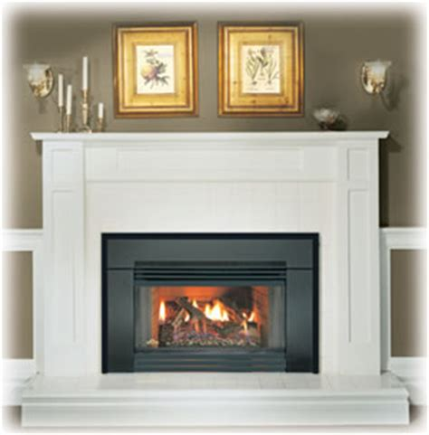 How To Operate A Wood Fireplace by Gi3600 Napoleon Natural Vent Gas Insert By Obadiah S