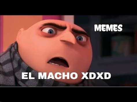 Video Meme - el macho i memes i origen youtube