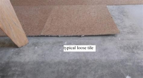 top 28 cork flooring problems top problems with