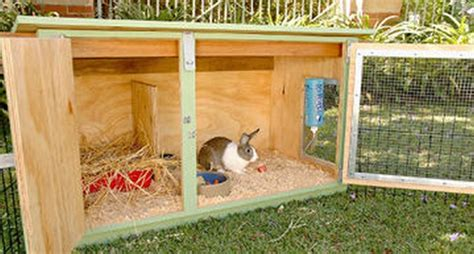 diy rabbit hutch building your rabbit hutch