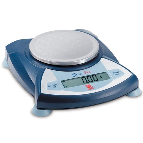 haus scout kiwi fruit scales accurate weighing ltd 07 5750803