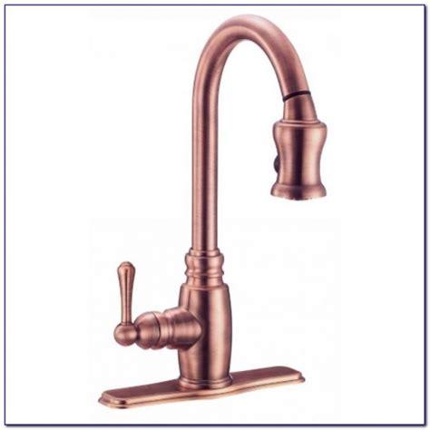 canadian tire delta kitchen faucet faucet home design