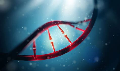 Genome Research Letter cancer risk linked to dna wormholes target review