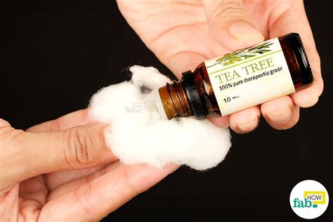 bed bugs tea tree oil tea tree oil for bed bugs how to treat chigger bites fast