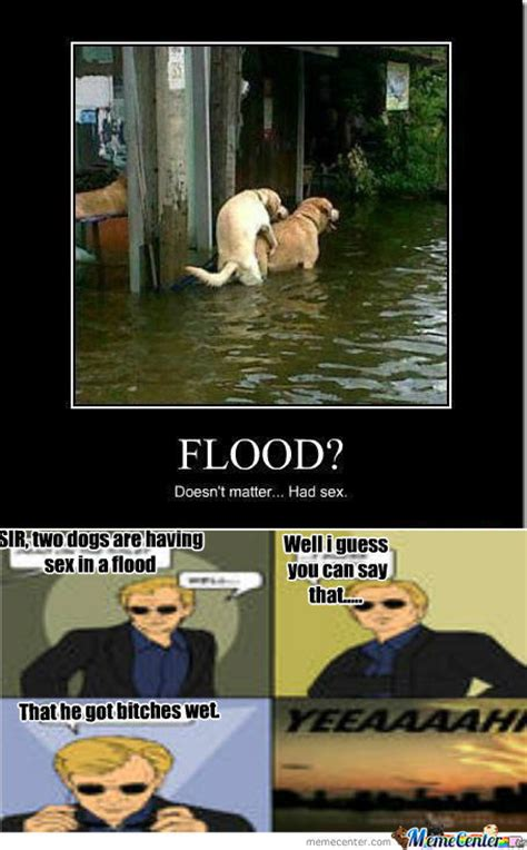 Flood Meme - rmx flood what flood by metalico meme center