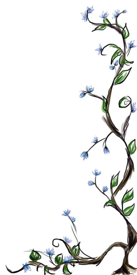 drawn vine flower png pencil and in color drawn vine