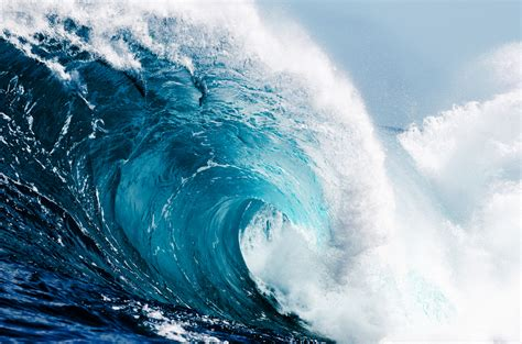 surviving the tidal wave thought leadership and
