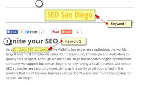 Seo Starter Guide seo starter guide introduction guide to seo ignite