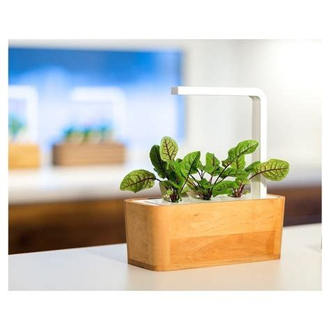 smart herb garden by click grow by click grow kickstarter click grow smart herb garden refill hapuoblikas 3tk