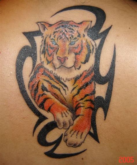 tiger with tribal tattoo color ink tiger and black tribal