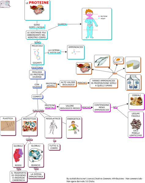 alimenti con aminoacidi alimenti e nutrienti sc media aiutodislessia net