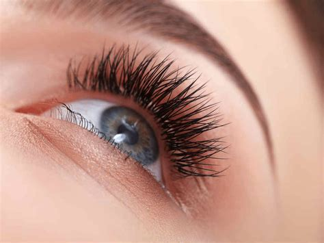 Eye Lash eyelashes perm image collections eye makeup ideas for