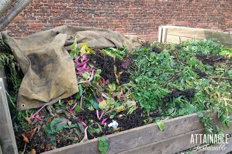 compost  beginners systems methods