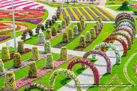 beautiful flower gardens of the world dubai miracle garden the most beautiful and largest