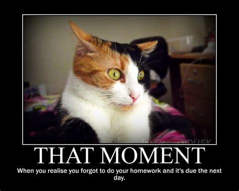 Motivational Memes That Moment Motivational Poster Meme By Generaldusk On