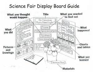 Science Fair Board Outline by Best 25 Science Fair Display Board Ideas On Fair Projects Science Fair Board