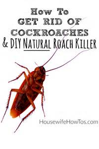 home remedies to get rid of roaches get rid of cockroaches and keep them away for