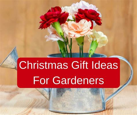 christmas gift ideas for gardeners backyard garden lover